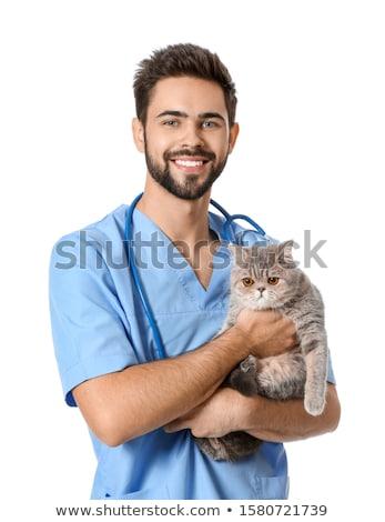 dierenarts · kat · ziekte · dierenarts · kliniek · man - stockfoto © kurhan