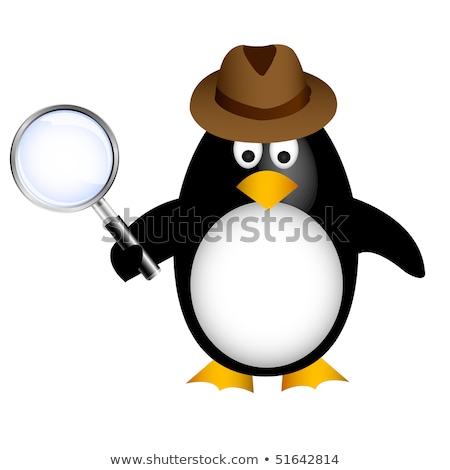 nyomozó · pingvin · nagyító · férfi · absztrakt · óceán - stock fotó © lemony
