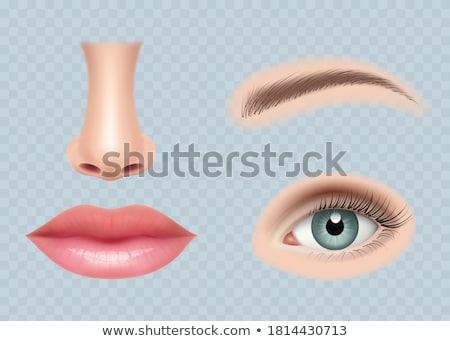 Realista boca conjunto ilustração atraente corpo Foto stock © Blue_daemon