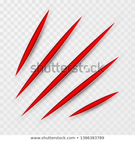 Red scratch set. Claws scratching animal scrape track. Vector illustration Stock photo © olehsvetiukha