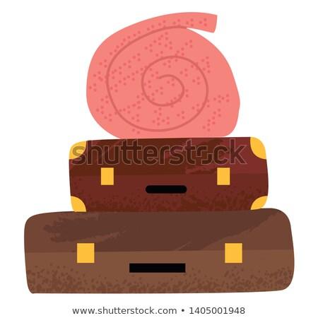 Bagaż przypadku koc podróży obiektu wektora Zdjęcia stock © robuart