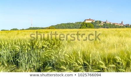 rond · mausoleum · zonnige · landschap · landschap · reizen - stockfoto © prill