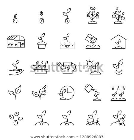 Watering Plant Icon Vector Outline Illustration Stock photo © pikepicture