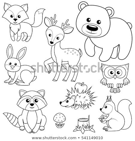 Kleurboek kinderen illustratie champignon kleur boek Stockfoto © natali_brill