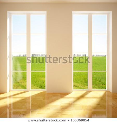 Dos Windows estuco pared granate textura Foto stock © bobkeenan