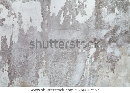 stone pit walls Stock photo © prill