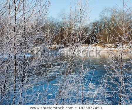 морозный снега холодно Blue Sky реке Сток-фото © morrbyte