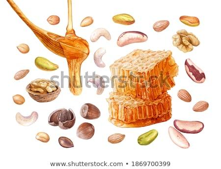 Amandelen noten honingraat witte bestanddeel kookkunst Stockfoto © Masha
