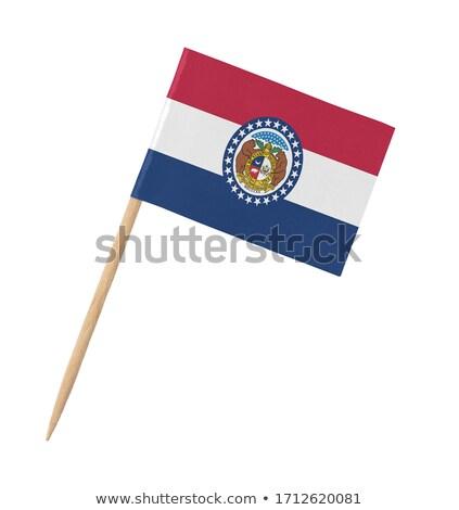 Minyatür bayrak Missouri yalıtılmış toplantı Stok fotoğraf © bosphorus