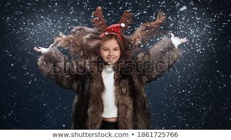 пальто · зима · серебро · мало · красивая · девушка · красивой - Сток-фото © lunamarina