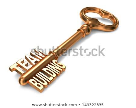 csapatmunka · arany · kulcs · fehér · 3d · render · üzlet - stock fotó © tashatuvango