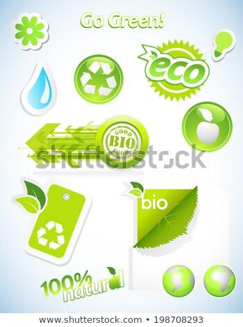 abstract eco star icon Stock photo © pathakdesigner