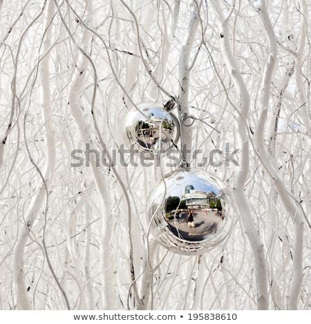 Beyaz boyalı vermek harmonik ağaç Stok fotoğraf © meinzahn