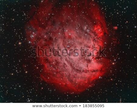 maymun · kafa · nebula · güneş · ışık · ay - stok fotoğraf © rwittich