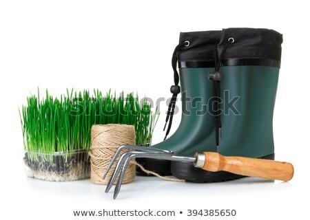 Tuin laarzen klein schop exemplaar ruimte werk Stockfoto © stevanovicigor