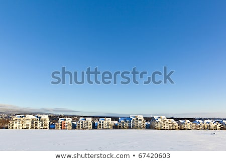 beautiful landscape with housing area in winter and blue sky Stock photo © meinzahn