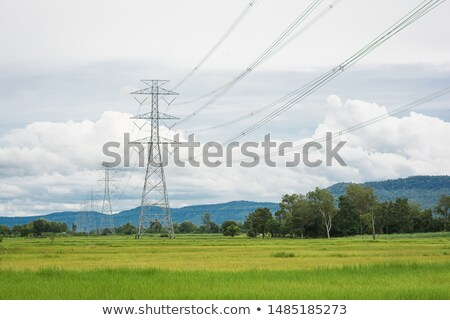 electrical post in a green field stock photo © nejron