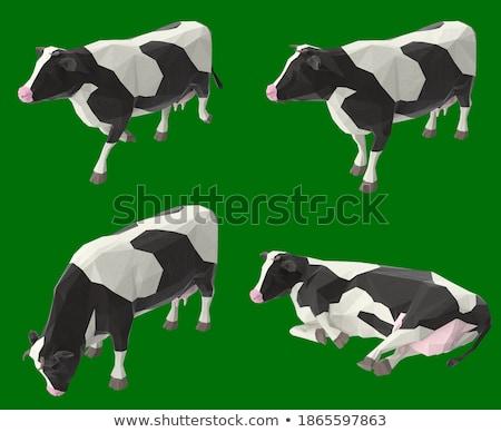 草原 牛 美しい 食品 自然 山 ストックフォト © Ainat