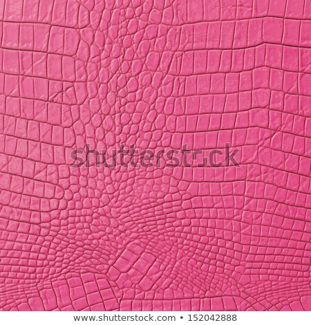 Roze bruin krokodil leder textuur mode Stockfoto © montego