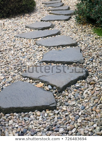 stone pathway in the park Stock photo © tungphoto