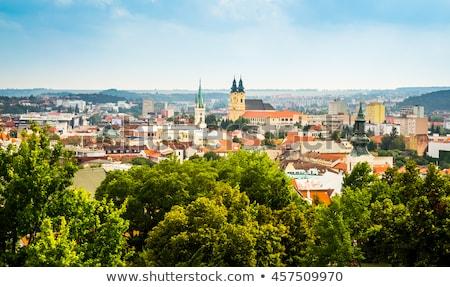 City of Nitra from Above Stock photo © Kayco