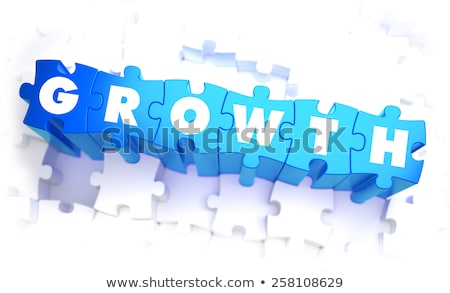 Croissance mot bleu couleur volume puzzle Photo stock © tashatuvango