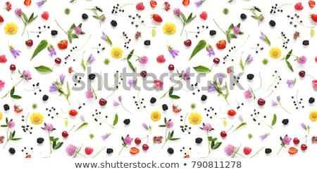 Сток-фото: цветы · женщину · весны · аннотация · кадр