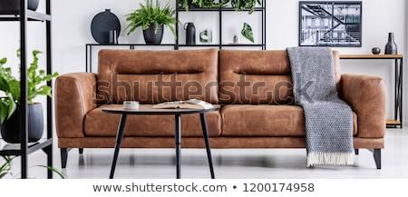 Cinza couro sofá moderno isolado branco Foto stock © kokimk