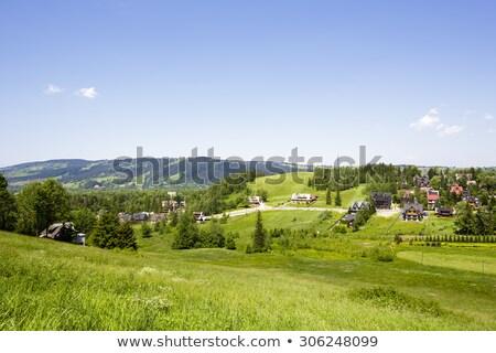 Vert ciel ville été bleu Photo stock © marekusz