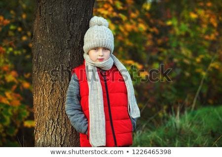 Férfi tél mellény kalap fekete divat Stock fotó © ozaiachin