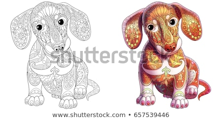 cartoon · honden · puppies · kleurboek · pagina · zwart · wit - stockfoto © izakowski