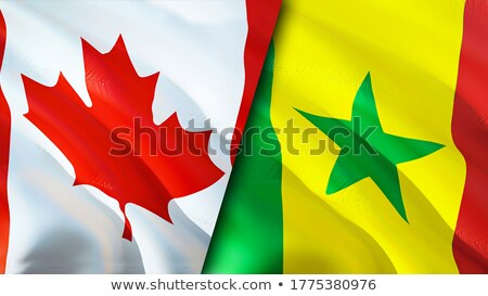 Canada and Senegal Flags  Stock photo © Istanbul2009