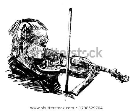 vector of musician playing violin stock photo © morphart