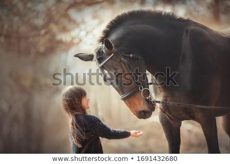 aranyos · vidék · visel · cowboykalap · arc · szépség - stock fotó © feverpitch