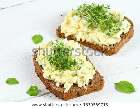 Torrado pão ovo fatia café da manhã salada Foto stock © Digifoodstock