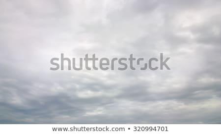 Grijs hemel toren heuvel achter New Zealand Stockfoto © rghenry
