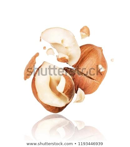 Stock photo: Cracked hazelnut