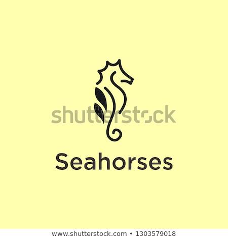 mer · cheval · silhouette · illustration · art · océan - photo stock © cidepix