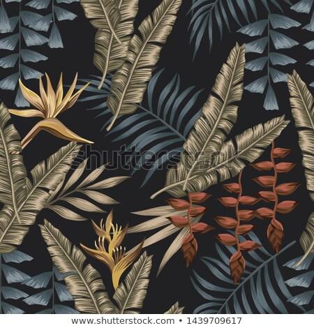 summer paradise design of bird and palm tree stock photo © cienpies