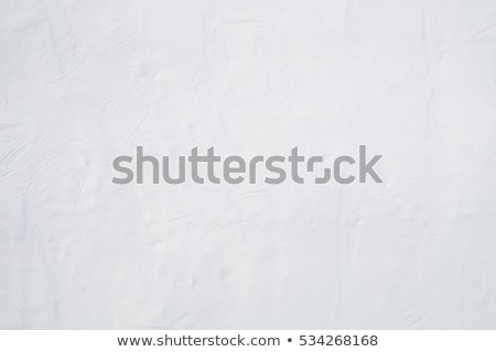 Big whitewashed white painted textured wall background. Stock photo © latent