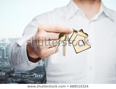 casa · trancado · cadeias · a · casa · branca · cadeado · branco - foto stock © AptTone