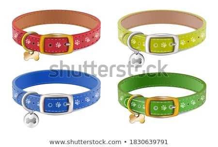 Leather Collar With Tag Stock photo © albund
