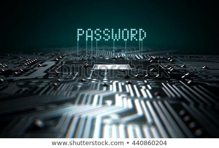circuit · board · wachtwoord · 3d · render · macro · Blauw - stockfoto © albund