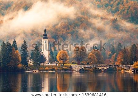Ködös reggel erdő tavacska tájkép fű Stock fotó © Juhku