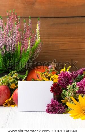 été · pastèque · cadre · tropicales · juteuse - photo stock © orensila