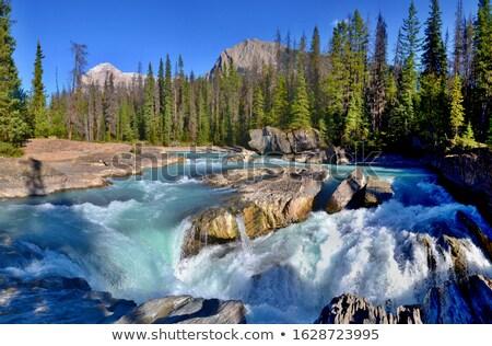 ストリーム 水 カスケード 小 滝 山 ストックフォト © rognar