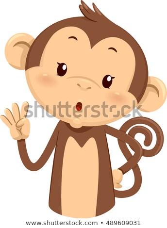 Maskotka małpa cztery ilustracja cute palce Zdjęcia stock © lenm