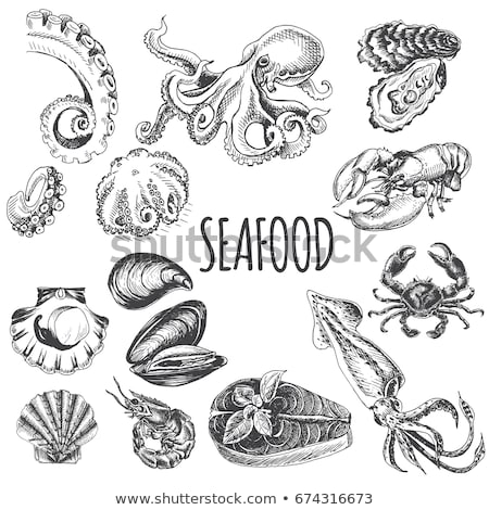 Mussel and Scallop Pattern Vector Illustration Stock photo © robuart