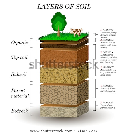 Geology Poster Soil Layers Vector Illustration Stock photo © robuart