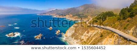 декораций Сан-Франциско Калифорния США пляж Сток-фото © prill